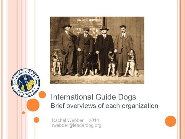 Social media guide dog North America