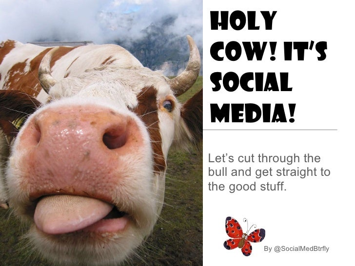 Holy Cow! It's Social Media! <ul><li>Let's cut through the bull and get straight to the good stuff.   </li></ul>By @Social...