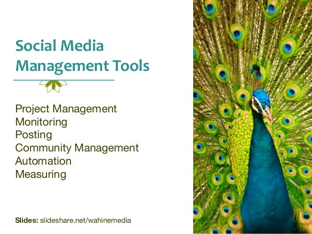 Social	   Media	    Management	   Tools Project Management Monitoring Posting Community Management Automation Measuring  S...