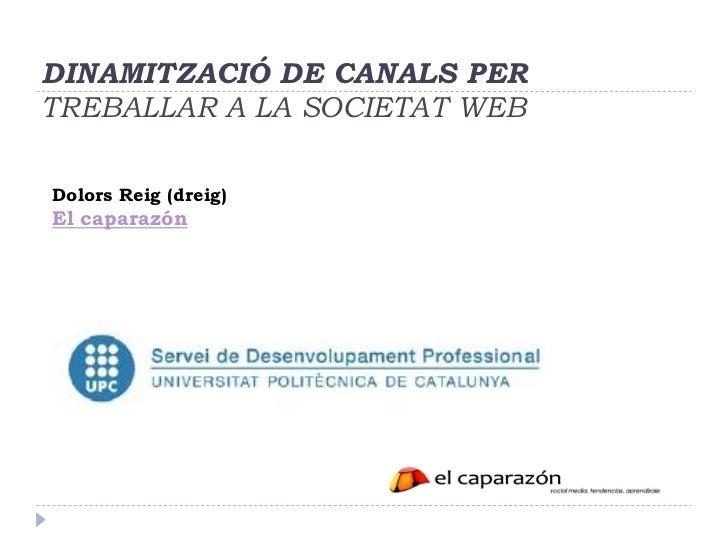 DINAMITZACIÓ DE CANALS PERTREBALLAR A LA SOCIETAT WEBDolors Reig (dreig)El caparazón