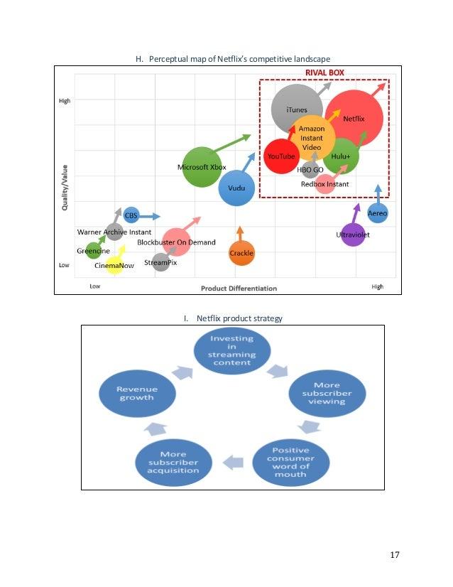 netflix case study analysis