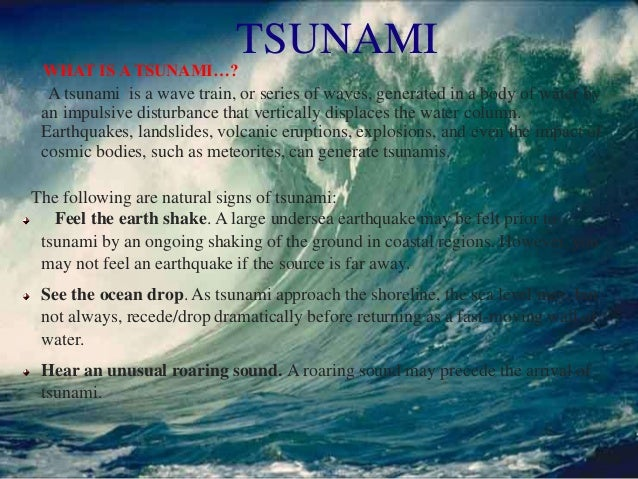 Essay on Tsunami The Natural Disaster