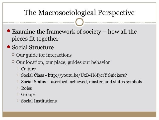 macro sociological perspectives No clear line of demarcation separates macro- and micro-level perspectives micro-level problems typically lead to macro-level ones, and solving a macro-level problem often requires managers to examine micro-level challenges.
