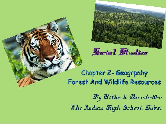 Social StudiesSocial StudiesChapter 2- GeogrpahyChapter 2- GeogrpahyForest And Wildlife ResourcesForest And Wildlife Resou...