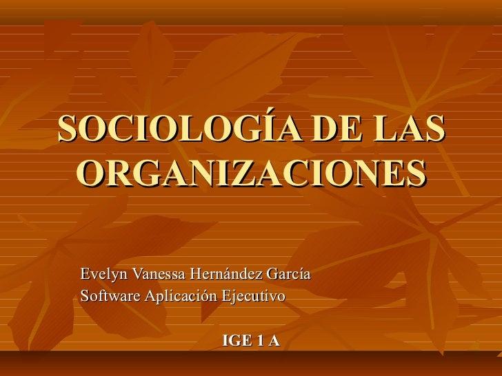 Sociologia de las_organizaciones