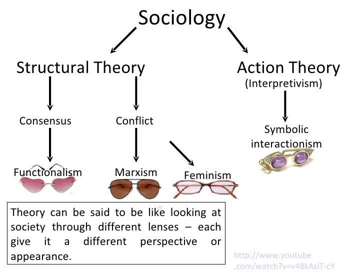 reaction conflict theory and consensus theory Conflict theory essay examples 21 total results an introduction to conflict theory and functionalism conflict, symbolic interactionist, functionalist.