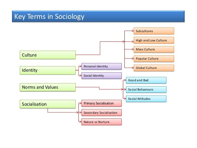 Key Terms in Sociology                                                    Subcultures                                     ...