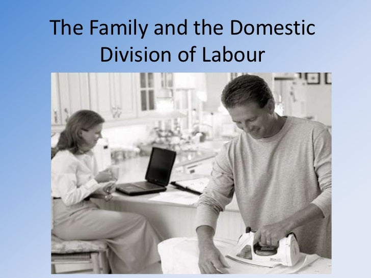 The Family and the Domestic Division of Labour <br />