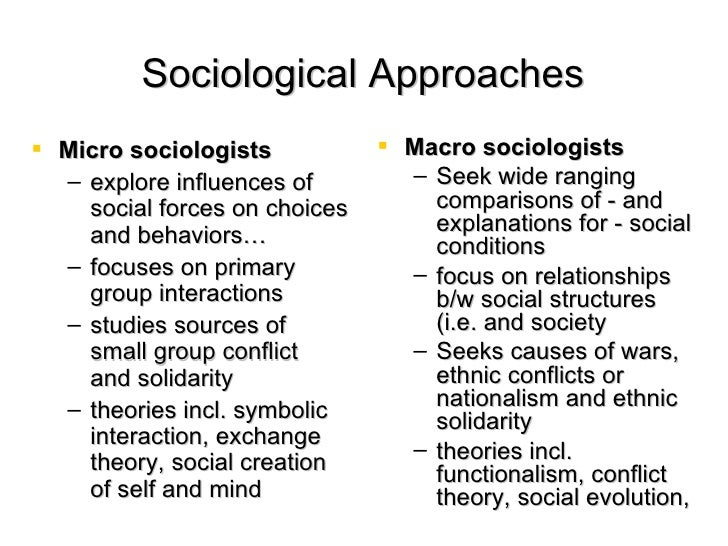 macro and micro sociology essays