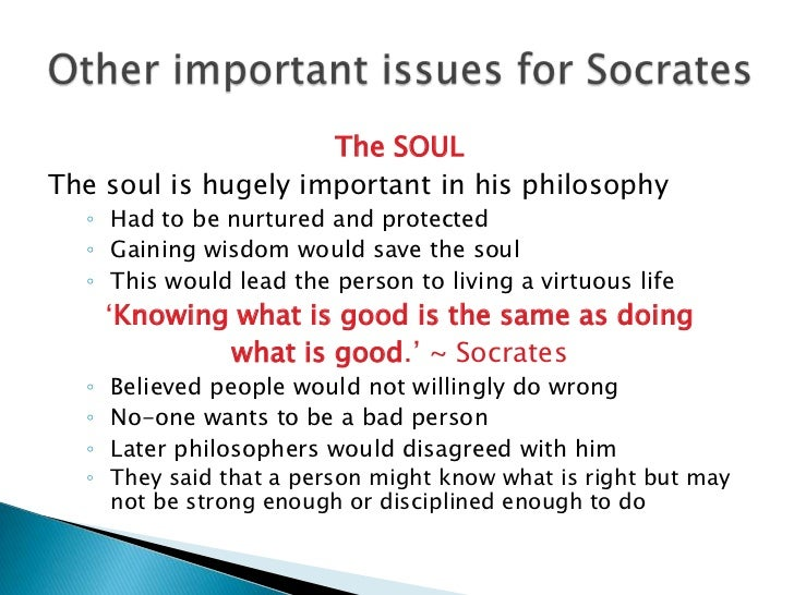 an analysis of platos philosophy on the immortality of the soul Plato is the classical source of philosophical arguments for the immortality of the soul by calling them 'philosophical' arguments i am distinguishing them from arguments which are based on.