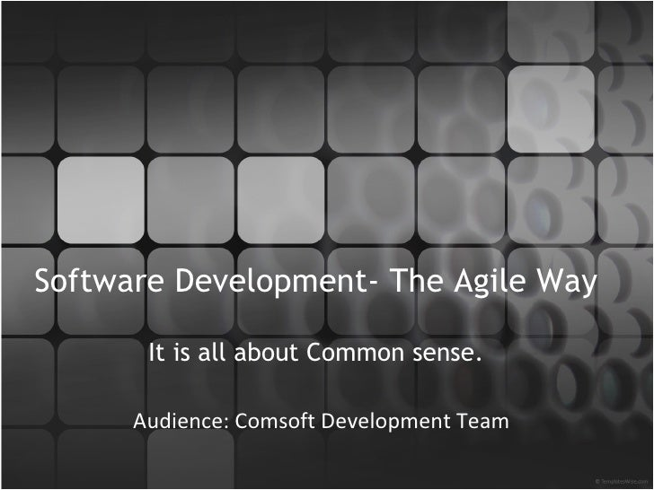 Software Development- The Agile Way It is all about Common sense. Audience: Development Team