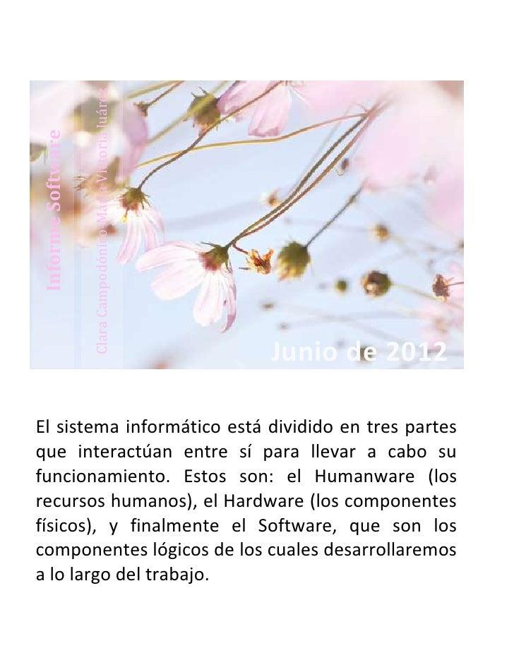 Clara Campodónico-María Victoria JuárezInforme Software                                                             Junio ...
