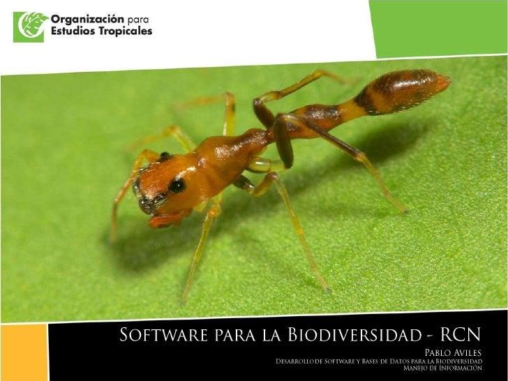 Presentación libro de marca OET 2009<br />Software para la Biodiversidad - RCN<br />Pablo Aviles<br />Desarrollo de Softwa...