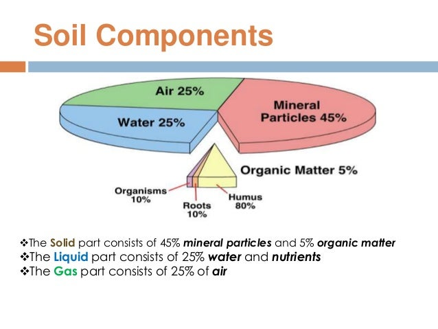 Soil for Four main components of soil