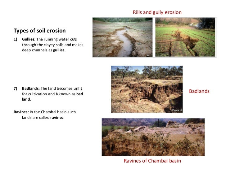 Soil erosion and soil conservation for 5 different types of soil