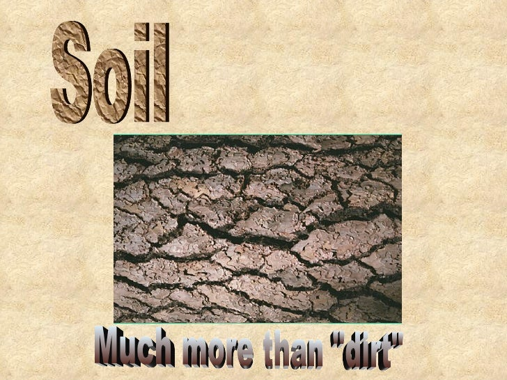 "Soil Much more than ""dirt"""