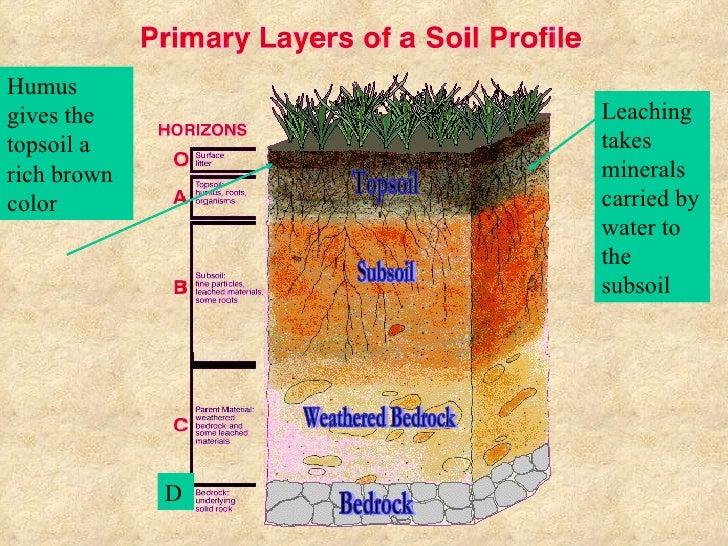 how to make infertile soil fertile