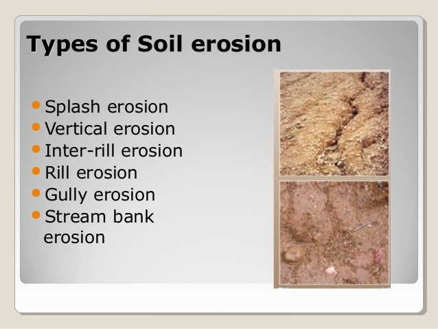 Soil and water conservation for dry zone of sri lanka for Soil zone of accumulation