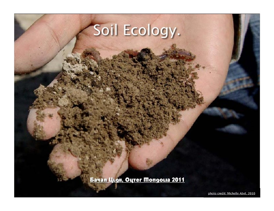 The 3 pillars of healthy soil: