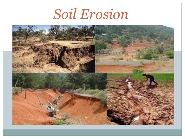 pics for causes of soil erosion by human activities