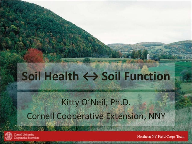 Soil Health ↔ Soil Function Kitty O'Neil, Ph.D. Cornell Cooperative Extension, NNY Northern NY Field Crops Team