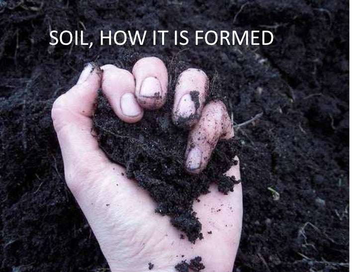 Soil, how formed  (teach)