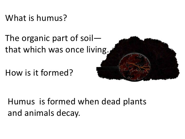 Soil how formed teach for Different parts of soil