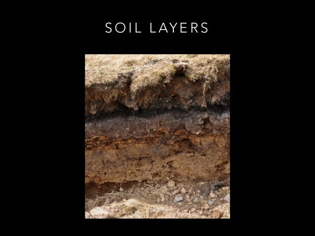Soil layers for What are the four layers of soil