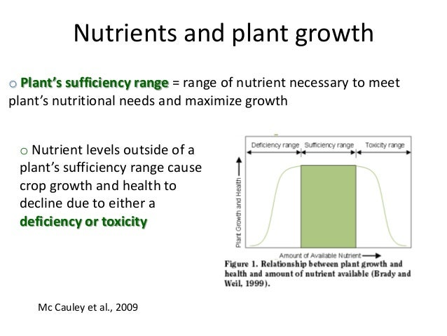 how to add nutrients to soil