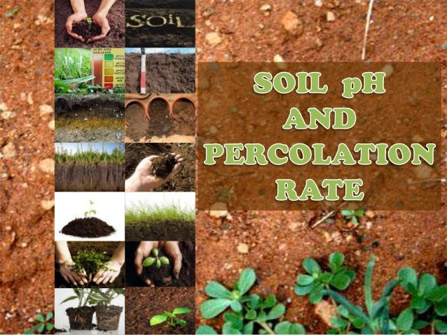 • What is ph ?• What is soil ph ?• How does soil ph affect soil growth?• How to measure soil ph ?• Symptoms of Soil Acidit...