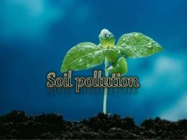 seminar of soil pollution Pollution is an environmental concern for people throughout the world one university study suggests that pollutants in the water, air, and soil cause up to 40% of.