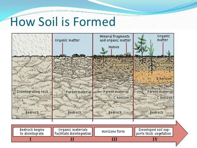 Effects water erosion images for What is soil made from