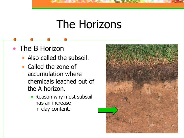 Soil properties for Soil zone of accumulation