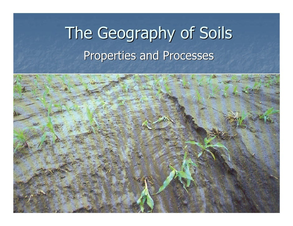 The Geography of Soils   Properties and Processes