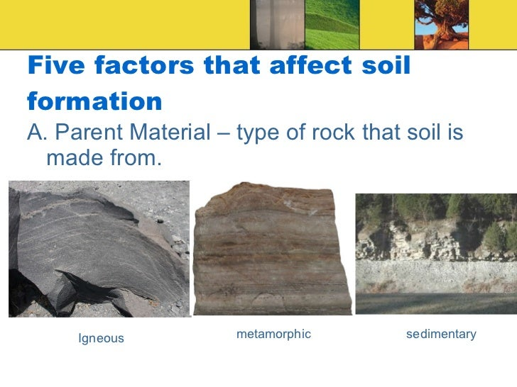 Soil science for Meaning of soil formation