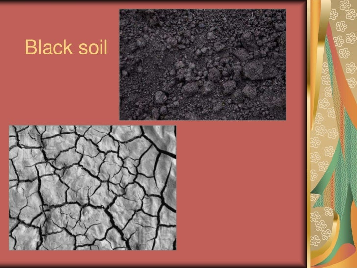 Soils for Soil quality pdf