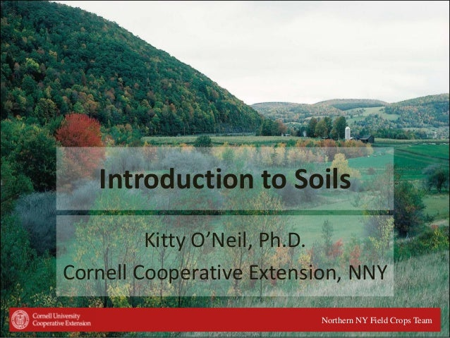 Introduction to Soils Kitty O'Neil, Ph.D. Cornell Cooperative Extension, NNY Northern NY Field Crops Team