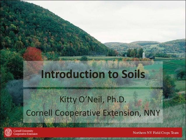 Soils 101 intro