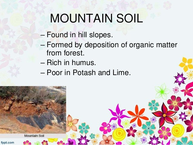 rich soils of india The chief characteristic of sodic soils from the agricultural stand point is that they contain sufficient exchangeable sodium to adversely affect the growth of most crop plants for the (1977) summarized the results of studies at the central soil salinity research institute, india.