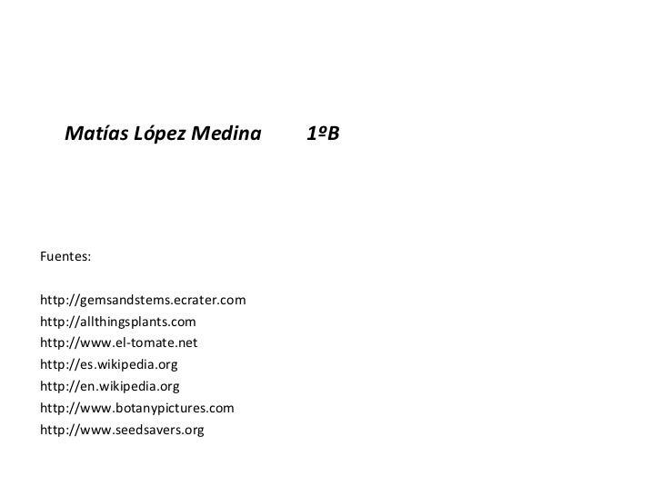 <ul><li>Matías López Medina  1ºB </li></ul><ul><li>Fuentes: </li></ul><ul><li>http://gemsandstems.ecrater.com </li></ul><u...