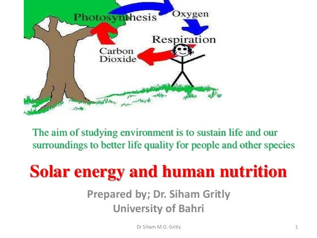 Solar energy and human nutrition