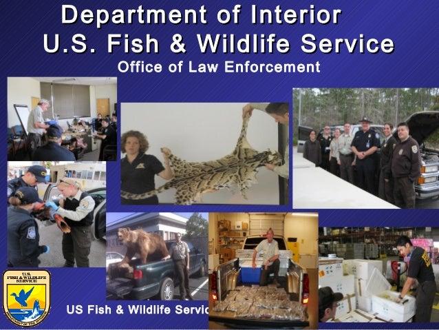 Department of Interior U.S. Fish & Wildlife Service Office of Law Enforcement  US Fish & Wildlife Service  11/19/13