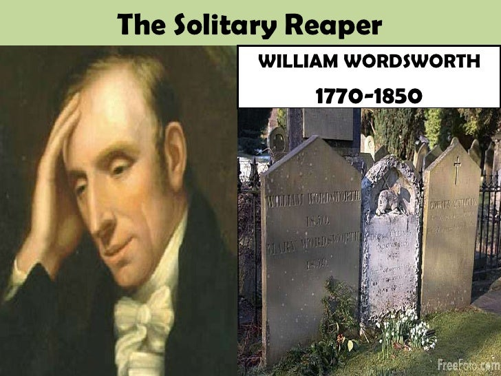 solitary reaper commentary The solitary reaper, a poem which he judges to have the degree of complexity necessary for full illustration of wordsworth's theory about the image of the poet as a halted traveller and about the poetry of surmise in which wordsworth seems to have excelled.
