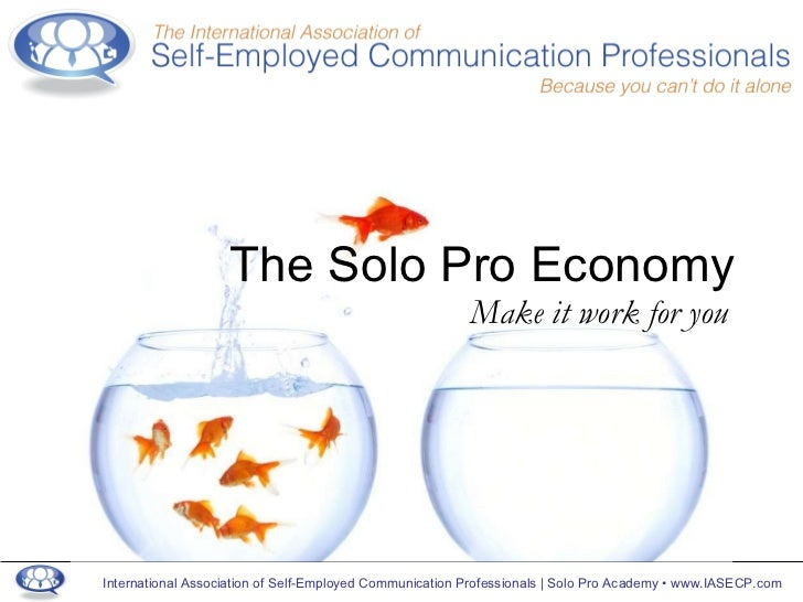 The Solo Pro Economy Make it work for you