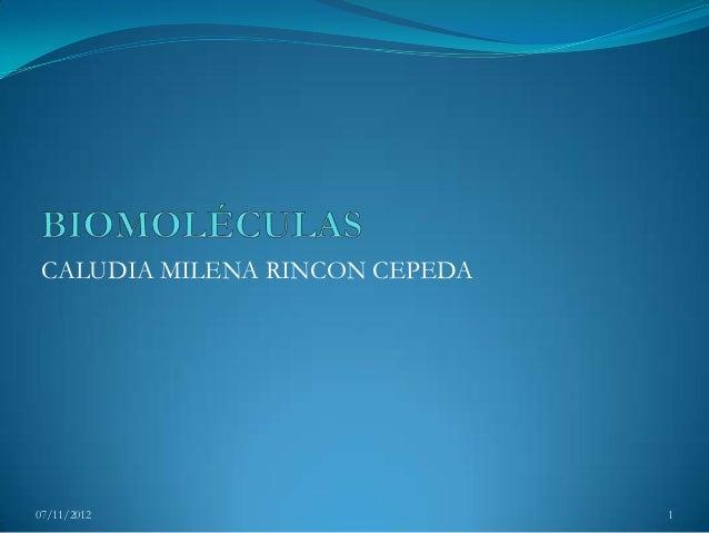 CALUDIA MILENA RINCON CEPEDA07/11/2012                      1