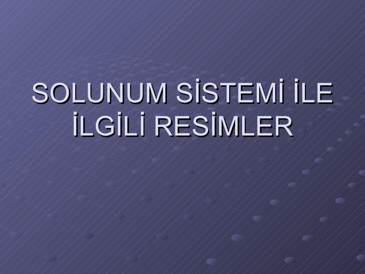 Solunum Sistemi Ile Ilgili Resimler