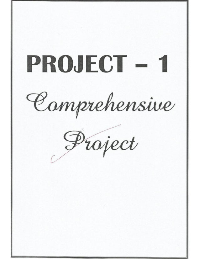Download Class 12th Accounts Project For Class