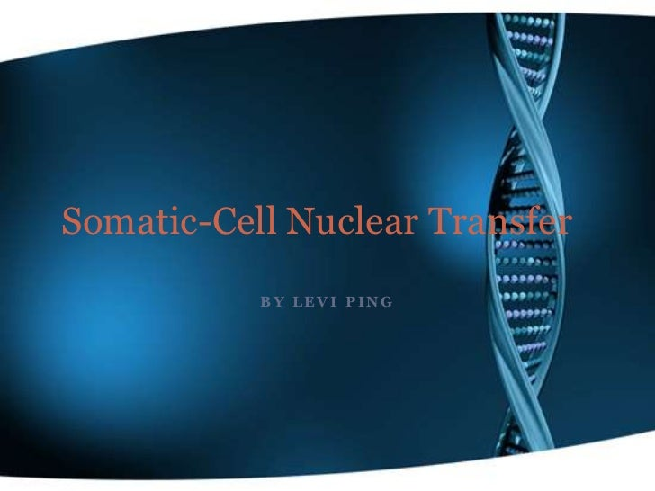 Somatic-Cell Nuclear Transfer           BY LEVI PING