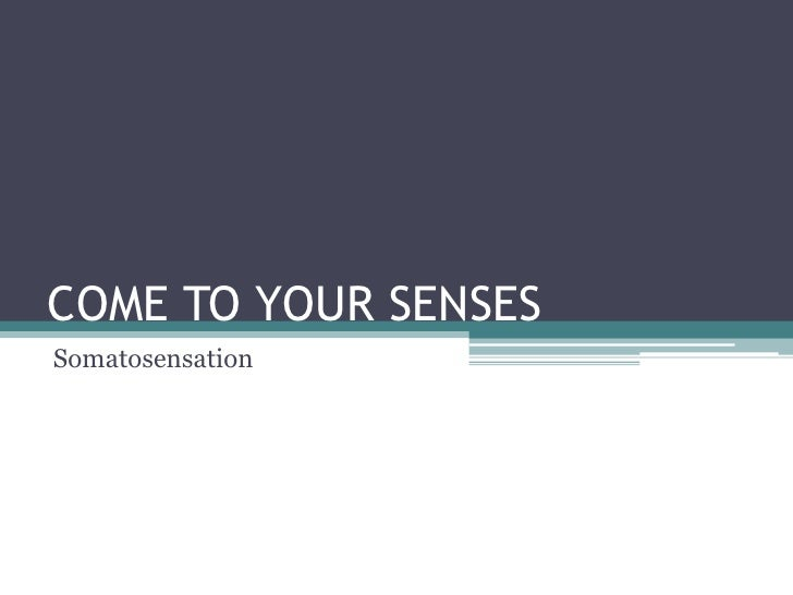 COME TO YOUR SENSES<br />Somatosensation<br />