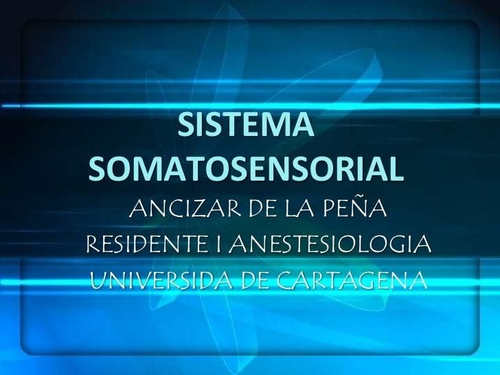 SISTEMA SOMATOSENSORIAL<br />ANCIZAR DE LA PEÑA<br />RESIDENTE I ANESTESIOLOGIA<br />UNIVERSIDA DE CARTAGENA<br />